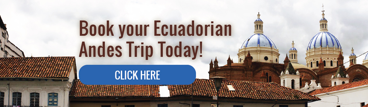 Book your Ecuadorian Andes Trip today!