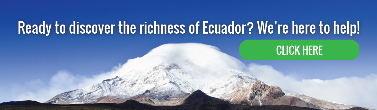 Ready to discover the richness of Ecuador?
