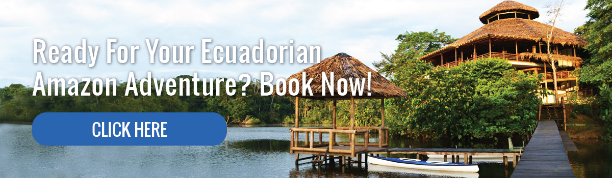 Ready for your Ecuadorian Amazon Adventure?