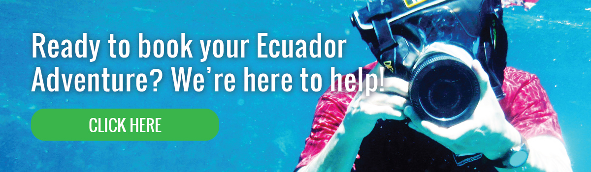 Ready to book Ecuador Adventure?