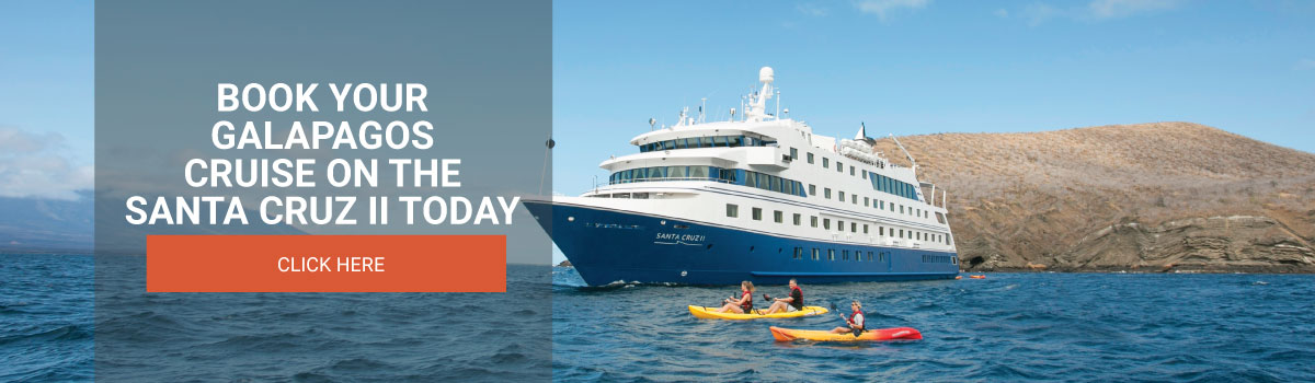 Book your Galapagos cruise on the Santa Cruz II today