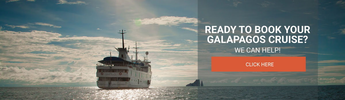 Ready to book your Galapagos Cruise?