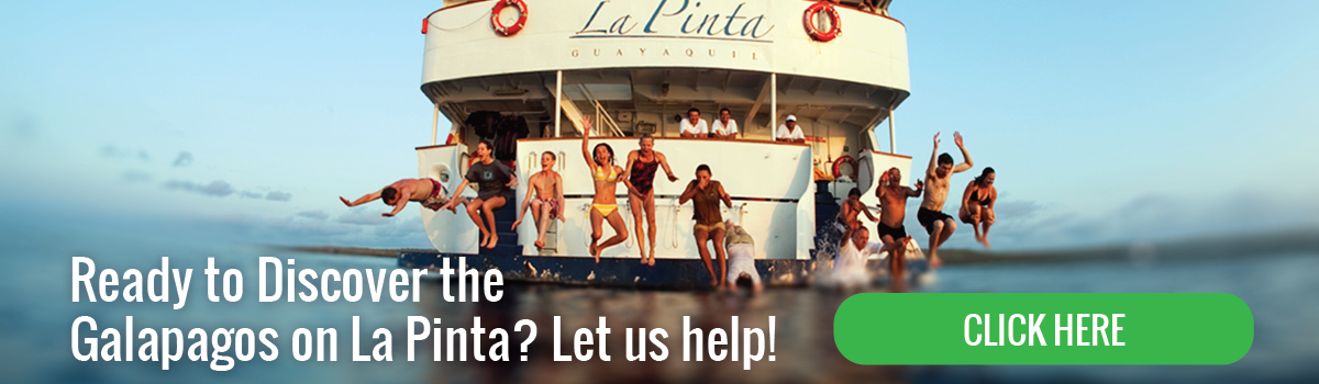 Ready to discover the Galapagos on la Pinta Yacht?